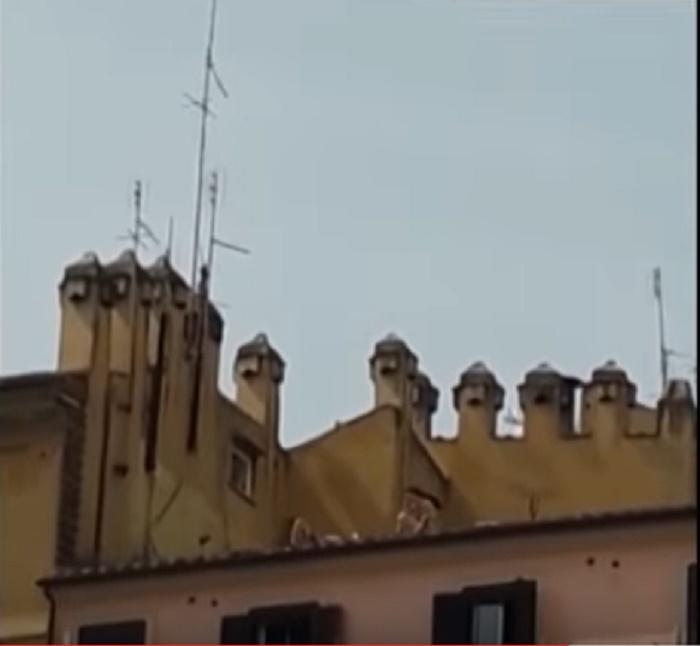 In mutande prendono il sole sul tetto a Roma