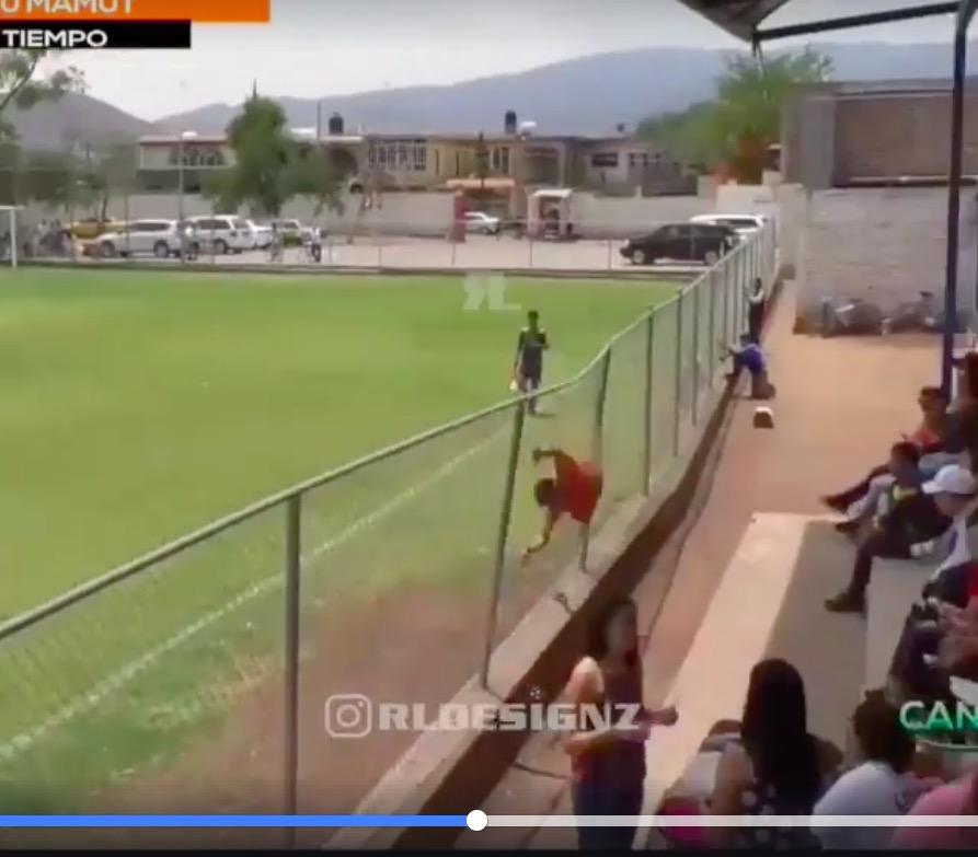 Video, che esultanza dopo il gol: si lancia contro rete di protezione