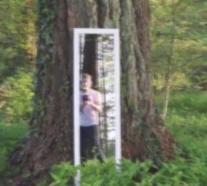 """YOUTUBE Kevin Parry """"attraversa"""" lo specchio nel bosco. In realtà..."""