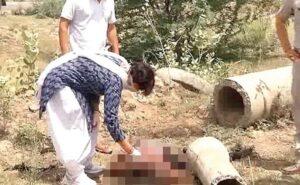India, violentata dal branco, uccisa e sbranata dai cani. Il corpo coperto di vermi