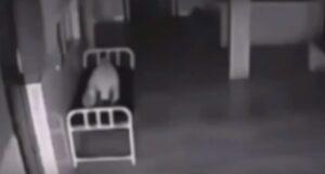 YOUTUBE Anima lascia il corpo di una donna: video fake o realtà?