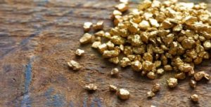 Batteri come Re Mida: fabbricano pepite d'oro