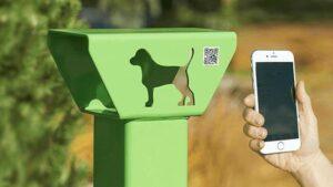Canada, energia dagli escrementi dei cani: il rivoluzionario progetto