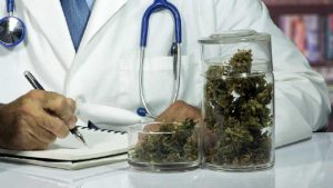 """Cannabis terapeutica, farmacie galeniche multate: """"Gli fanno pubblicità online"""""""