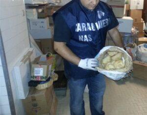 Vado Ligure, Asl chiude panetteria: nella farina c'erano escrementi di topo