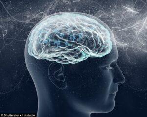 Cervello, dove nasce la fede? Scoperta lesione cerebrale che rende estremisti