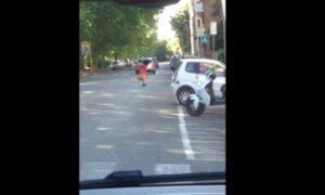 Roma, una cornacchia attacca una donna all'Eur VIDEO