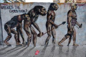 Evoluzione separata uomo-donna? 6500 geni diversi