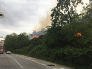 Termoli, vasto incendio a Rio-Vivo: case sgomberate, circolazione treni interrotta