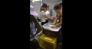 YOUTUBE Birra Bud contraffatta in Cina: prodotta in condizioni igieniche tremende