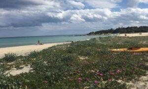 Sardegna, le spiagge più belle e bandiera blu nel 2017